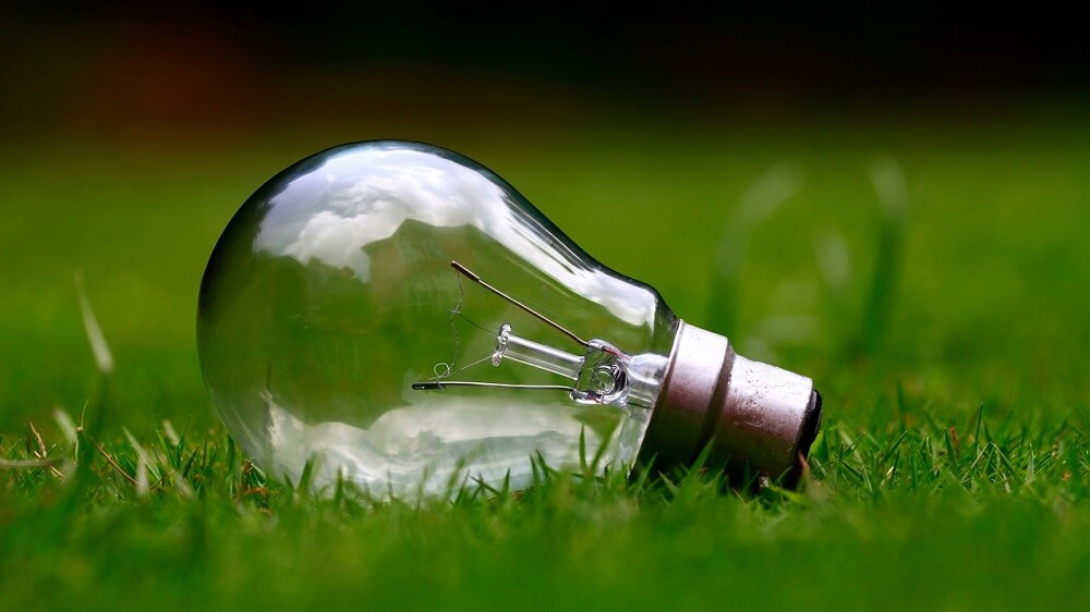 lightbulb in grass