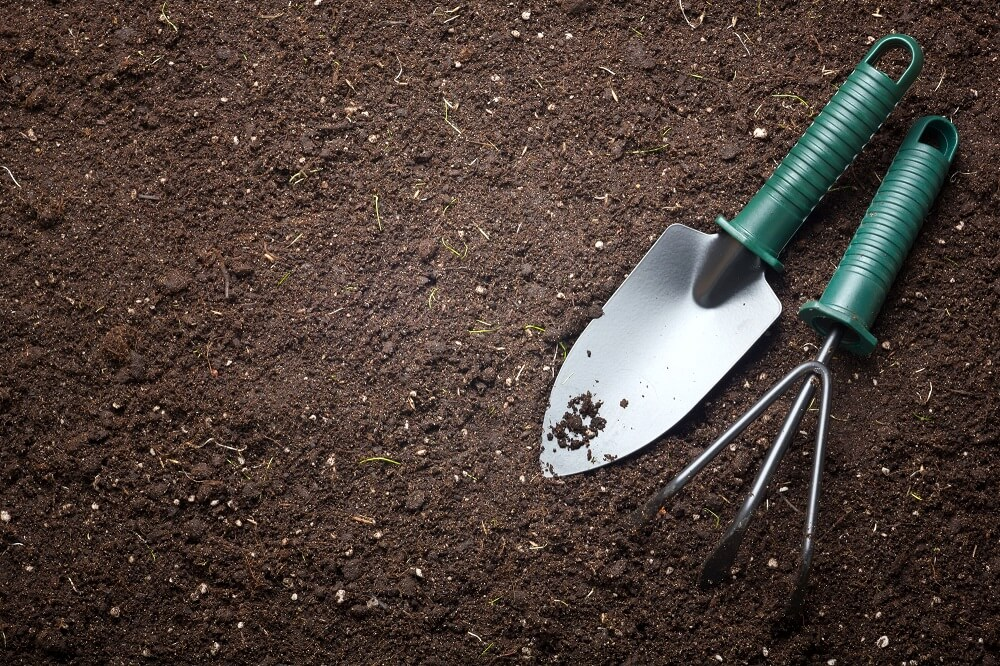 garden tools lying in yard